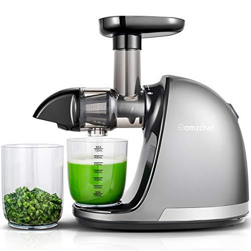 AMZCHEF Slow Juicer BPA-frei Entsafter Gemüse und Obst Profi Entsafter mit Ruhiger Motor & Umkehrfunktion & Saftkanne & Reinigungsbürste(150 Watt/Silber Grau)