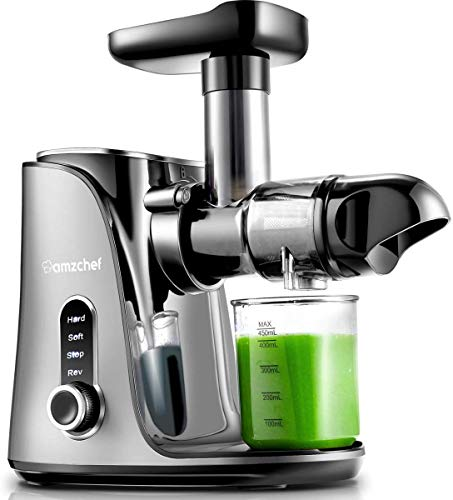 AMZCHEF Entsafter Slow Juicer leistungsstarker Entsafter für Obst und Gemüse mit 2 Geschwindigkeitsmodi, 2 Reiseflaschen (500 ml), LED-Anzeige, Reinigungsbürste und Ruhiger Motor (Grau)